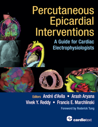 Percutaneous Epicardial Interventions:
